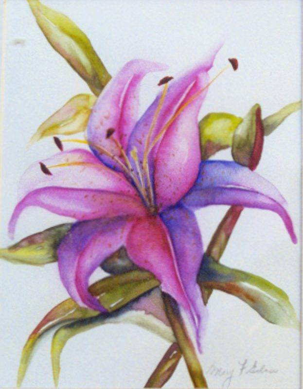 Lily One - Sold