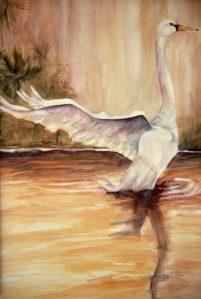 splash down on golden pond- AVAILABLE
